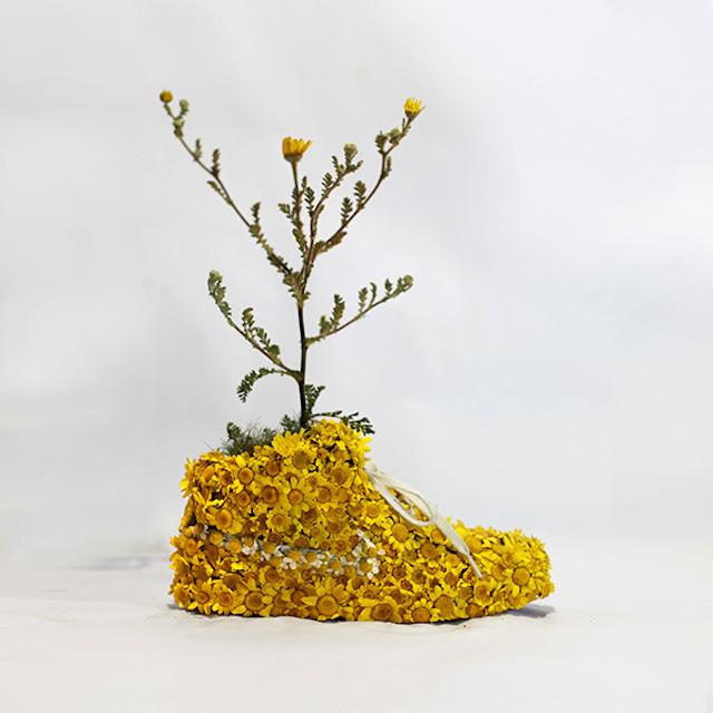 ナイキのスニーカーを器にした盆栽の写真