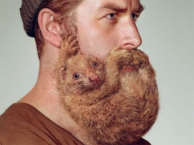 男性の髭に動物が隠れている写真